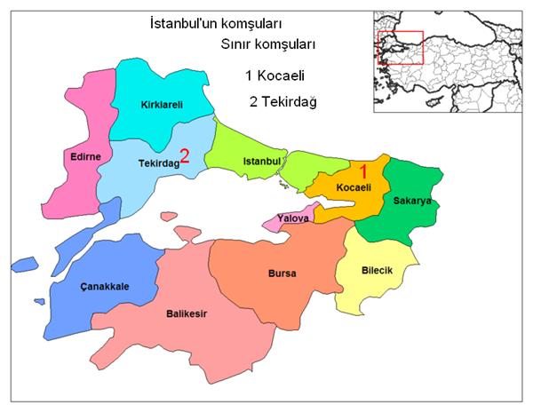 istanbulda-web-tasarımı