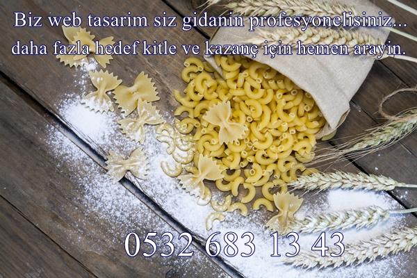 Gıda Web Site Tasarımları