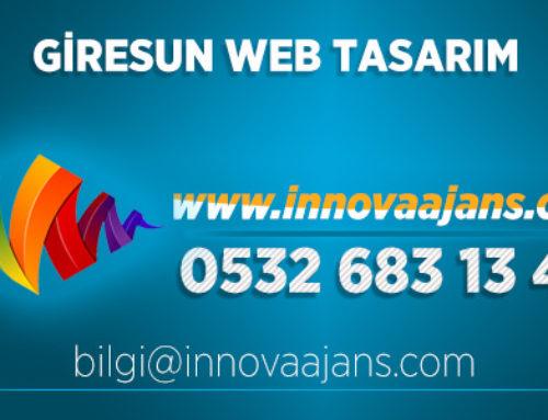 Şebinkarahisar Web Tasarım