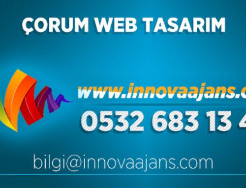 Alaca Web Tasarım