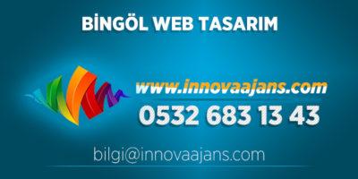 Bingöl Merkez Web Tasarım