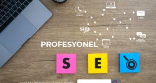 Profesyonel SEO ajansları